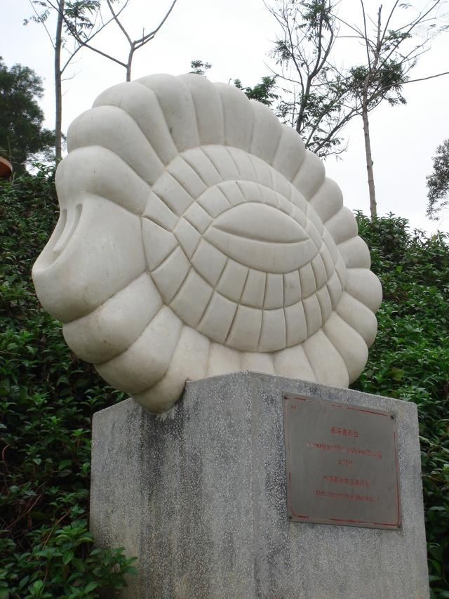 [贴图][游山玩水]海洋原生动物有孔虫雕塑公园