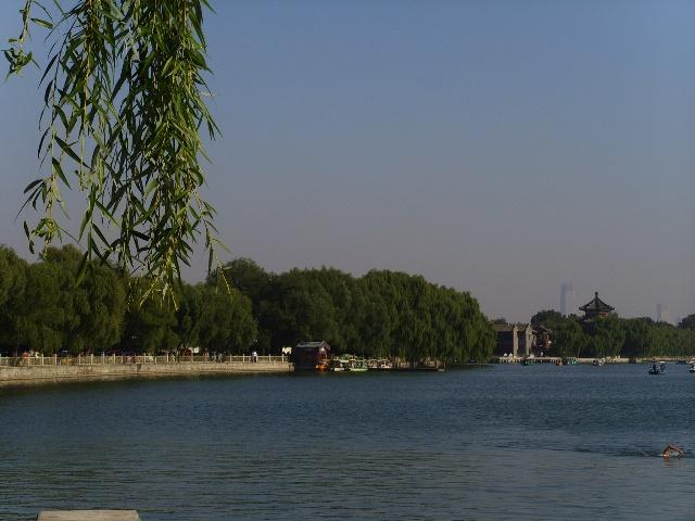 骑自行车的风景(照片两张)