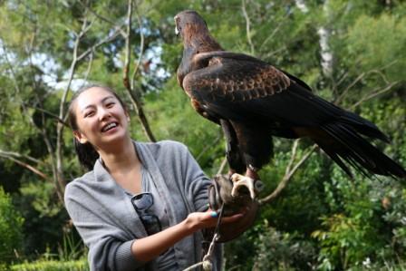 野生鸟类保护区