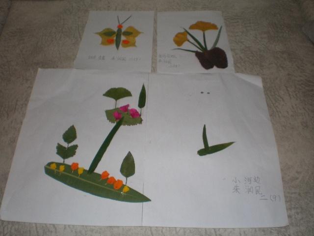 妈妈陪我去公园捡秋天的各种落叶完成星期五老师布置的树叶贴画作业.