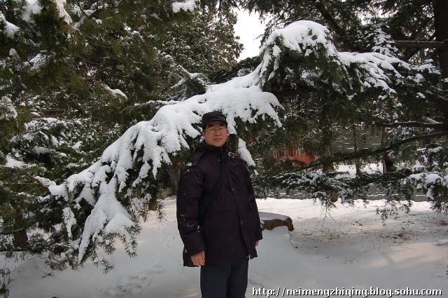 我留了张雪景的照片-香山看雪景图片