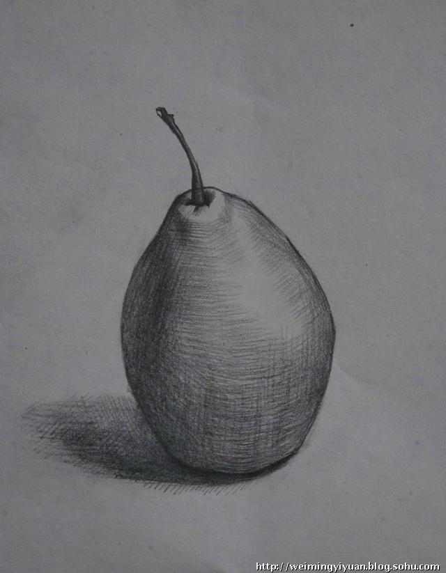 素描梨子的画法,苹果梨子简笔画