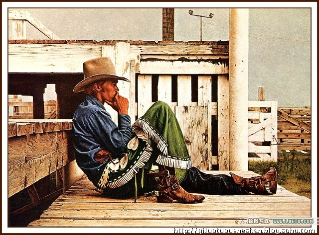 我眼中的西部牛仔