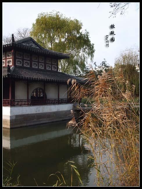 苏州游之二:拙政园