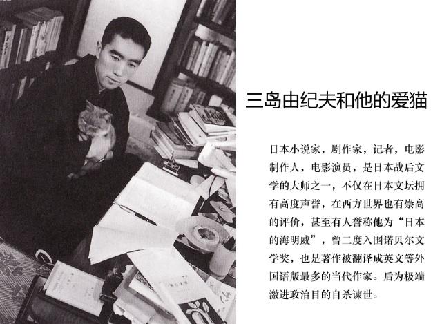 三岛由纪夫溺爱猫比夏目漱石还绝,大约30岁的时候,三岛在书斋里专门打