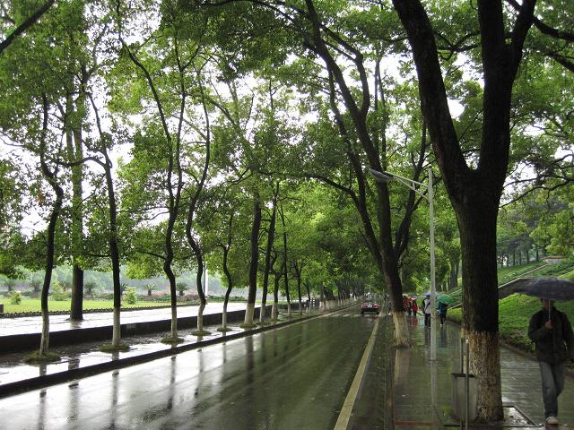 中南大学校园里的景色