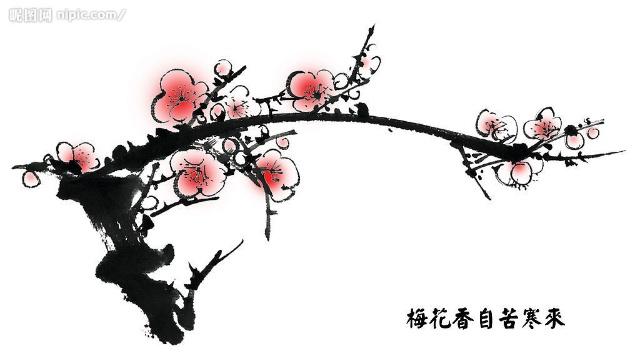 梅花树铅笔画步骤图解