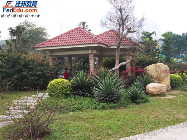 植物配置实景图片-庭院植物景观设计-搜狐博客