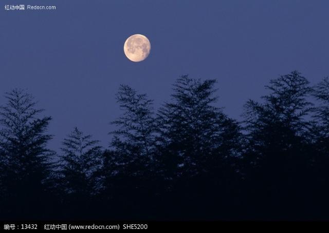 我心中有个月亮