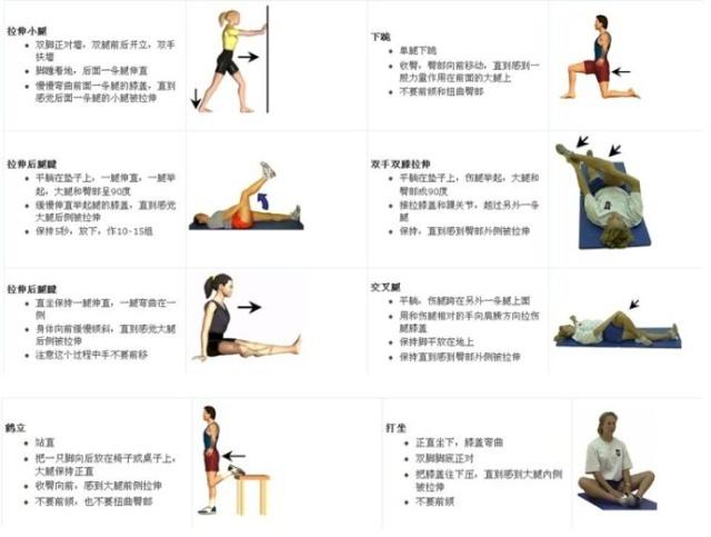 膝盖图解结构图