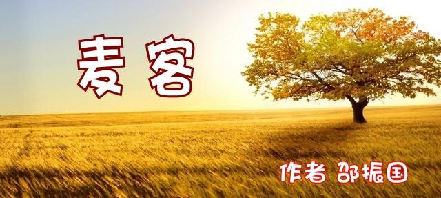 小说连载:麦客 (6)-会唱歌的树-我的搜狐
